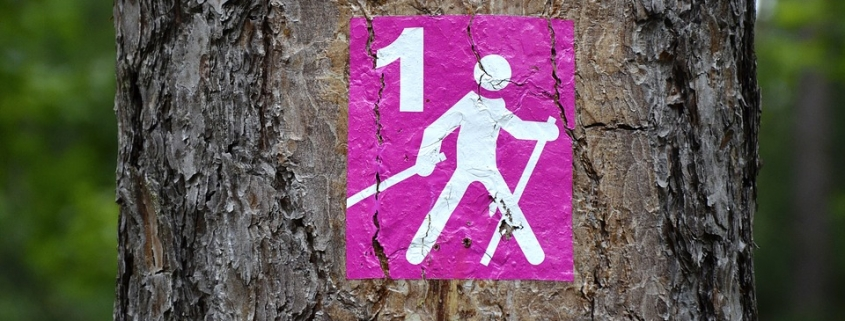 Beneficios articulares del Nordic Walking
